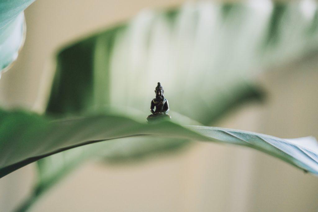 meditazione-Foto di Samuel Austin su Unsplash