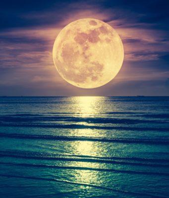 luna-piena-photo web